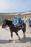 Odmienianie strażnik blisko pałac królewskiego. Szwecja. Sztokholm Obraz Royalty Free