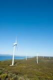 Odnawialna Wiatrowego gospodarstwa rolnego zachodnia australia Zdjęcie Royalty Free