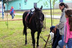 Odoev 6月2017年,俄罗斯:民间节日`祖父Filimon ` s传说` -马术的黑马 免版税图库摄影