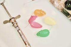 Odontología pediátrica El primer diente miente en la caja al lado de la jeringuilla del ratón imagen de archivo libre de regalías