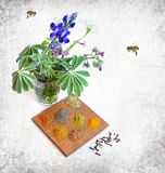 Odor smell. Various spices over wooden board, herbs flowers and honey bees on textured background Stock Photos