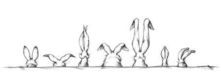 Oídos de conejo en diversos formas y tamaños Imágenes de archivo libres de regalías