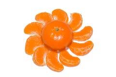 Odosobneni cytrusów segmenty Kolekcja tangerine, pomarańcze i inni cytrus owoc strugający segmenty odizolowywający na białym tło  Zdjęcie Stock