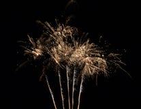 Odosobneni fajerwerki na Czarnym tle fotografia stock
