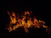 Odosobneni płomienie z płonącymi traw ostrzami, szczegóły Obraz Stock