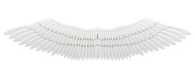 odosobneni skrzydła Zdjęcie Royalty Free