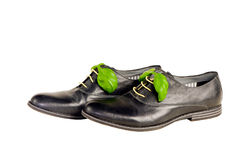 Odosobneni włoscy rzemienni buty Fotografia Royalty Free