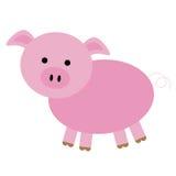 Odosobniona świnia Obrazy Royalty Free