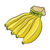 Odosobniona Bananowa kreskówka - Wektorowa ilustracja Obrazy Royalty Free