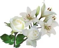 Odosobniona czysta biel lelui i róży kwiatów wiązka Fotografia Stock