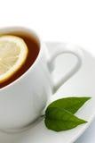 odosobniona filiżanki herbata Zdjęcie Royalty Free