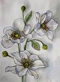 Odosobniona gałąź biali delikatni akwarela kolory, malująca obok ilustracji