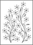 Odosobniona kwiat ilustracja Zdjęcia Stock