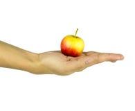 Odosobniona mężczyzna ręka z czerwonym żółtym jabłkiem na bielu Fotografia Stock