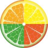 Odosobniona owoc Zdjęcie Stock