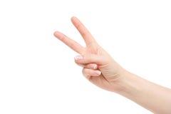 Odosobniona pusta żeńska ręka na białym tle Fotografia Royalty Free