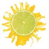 odosobniona soku wapna pomarańcze pokrajać pluśnięcie Obrazy Royalty Free