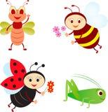 Odosobnione insekt ilustracje, pszczoła, biedronka, pasikonik, komarnica Fotografia Royalty Free