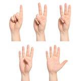 Odosobnione mężczyzna ręki pokazują numerowy jeden, dwa, trzy, cztery, pięć Zdjęcie Stock