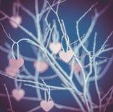 odosobnionego loga miłości przedmiota znaka drzewny warianta wektor Obrazy Stock