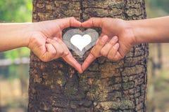 odosobnionego loga miłości przedmiota znaka drzewny warianta wektor Obrazy Royalty Free