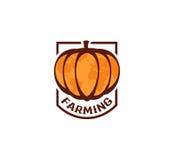 Odosobniony abstrakcjonistyczny pomarańczowy koloru round kształta dyniowy logo na białym tle, uprawia ziemię logotyp, jesieni wa Zdjęcie Royalty Free
