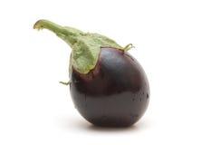 odosobniony aubergine biel Obrazy Royalty Free