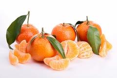Odosobniony clementine obraz stock