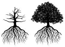 Odosobniony drzewo z korzeniami ilustracja wektor
