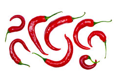 odosobniony formy ornamental pieprzy czerwień Zdjęcia Royalty Free
