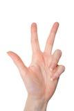 Odosobniony kobiety ręki seans liczba trzy odizolowywająca na bielu Obraz Stock