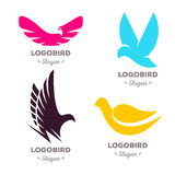 Odosobniony kolorowy latających ptaków loga wektorowy set Zwierzęcy logotypy inkasowi Obrazy Stock