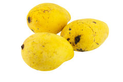 odosobniony mangowy kolor żółty Zdjęcie Royalty Free
