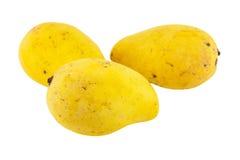 odosobniony mangowy kolor żółty Obraz Royalty Free