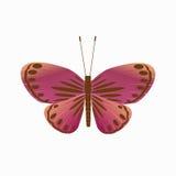 Odosobniony motyl na białym tle ilustracji