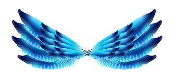 Odosobniony piórko na białym tle. skrzydła ilustracja wektor