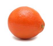 odosobniony pomarańczowy tangerine zdjęcie royalty free