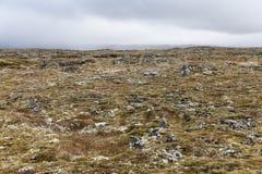 Odosobniony powulkaniczny krajobraz przy snaefellsnes półwysepem Zdjęcia Stock