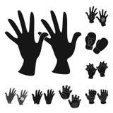Odosobniony przedmiot ciep?y i wygoda symbol Kolekcja ciep?y i stylowy akcyjny symbol dla sieci royalty ilustracja