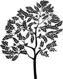 Odosobniony stylizowany monochromatyczny drzewo, wektorowa ilustracja Zdjęcia Royalty Free