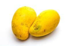 Odosobniony tropikalny mango Fotografia Royalty Free