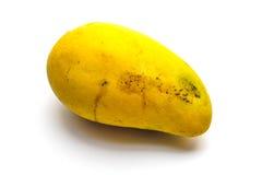 Odosobniony tropikalny mango Zdjęcia Royalty Free