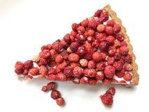 Odosobniony truskawkowy tarta Fotografia Stock