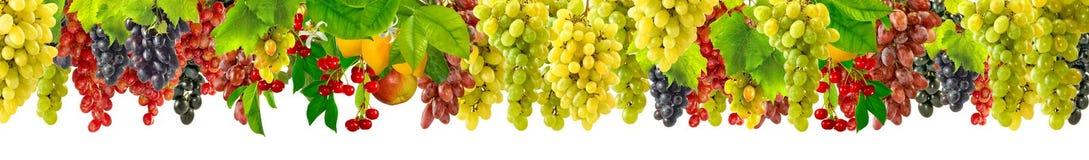 Odosobniony wizerunek winogrona Zdjęcia Stock