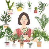 Odosobnionych przedmiotów salowe rośliny i kwiaty w różnych garnkach i zdjęcie stock