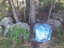 Odpady w naturze Zdjęcie Royalty Free