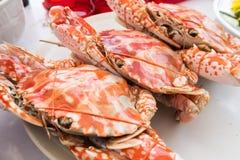 Odparowani Błękitni kraby w talerzu zdjęcie stock