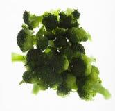 Odparowani brokułów Florets Obrazy Stock