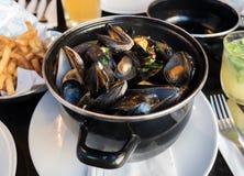 Odparowani mussels, francuzów dłoniaki i piwo, fotografia stock