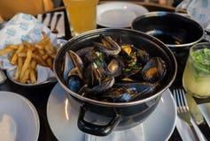 Odparowani mussels, francuzów dłoniaki i piwo, fotografia royalty free